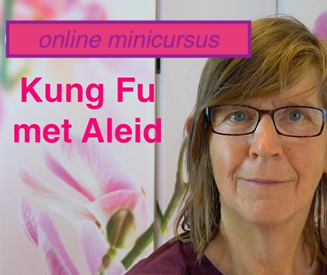 minicursus online Kung Fu